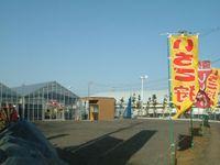 20090214ichigo
