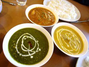 20100211spicegarden_curry