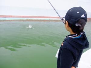 20111106esatsuri