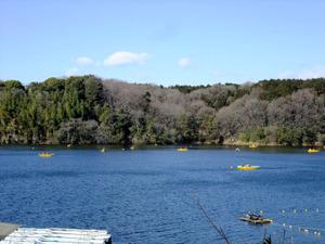 20120129miyazawako2