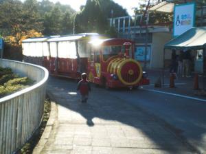 20120129miyazawako3