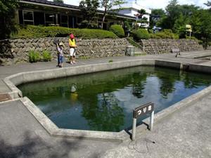 20120804akasaka2
